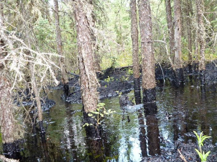 Bitumen Spill Canada